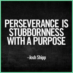 Nessa Grace~Perseverance Stubbornness