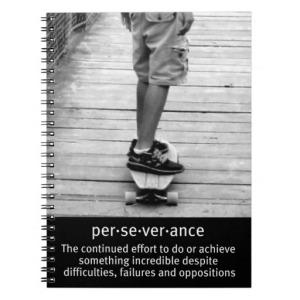 Nessa Grace~Perseverance