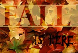 Nessa Grace-Fall is Here!